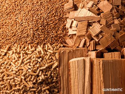 Thumpnail_Leistungen_AlternaiveEnergien_Biomasse-bearbeitet